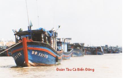 Hình 5: Đoàn tàu gỗ đánh cá Biển Đông trên Sông Tiền chuẩn bị ra khơi, họ luôn luôn bị Trung Quốc truy đuổi ngay trên vùng biển chủ quyền của Việt Nam mà không được bảo vệ [nguồn: photo by Ngô Thế Vinh]